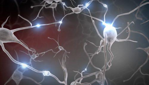 Phát triển não bộ thông qua vận động
