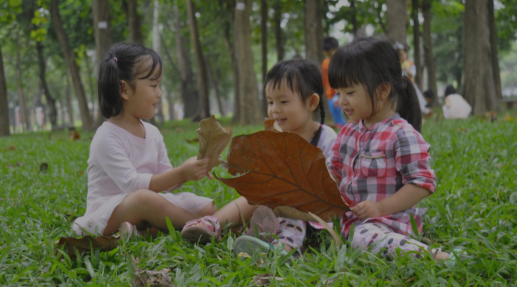 Phát triển tư duy và tiềm năng thông qua hoạt động xã hội